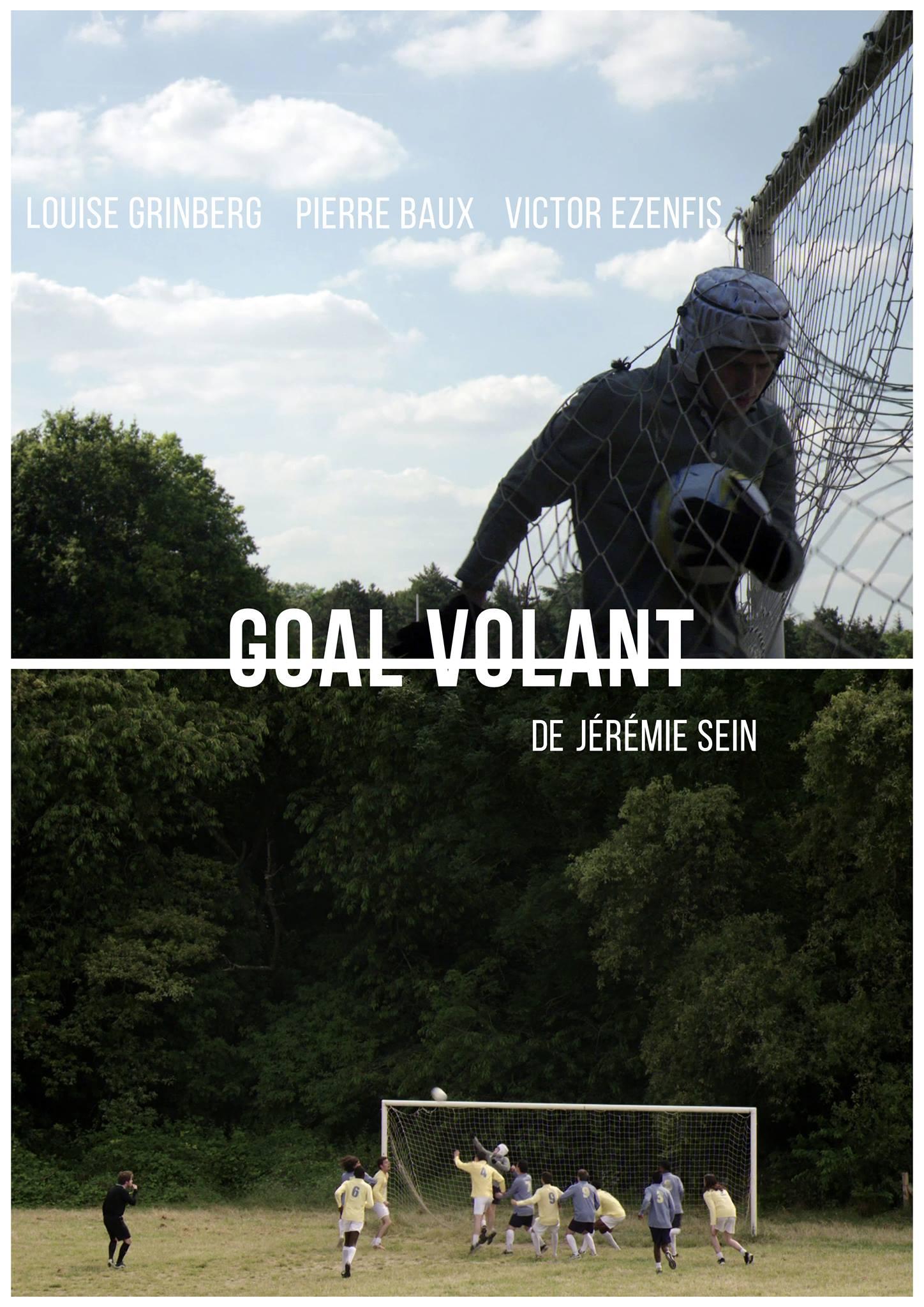 goal-volant